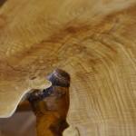 「樹齢200年広葉樹の一枚板展」開催中です。