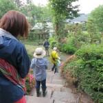 【松葉屋】森へいくツアー・6月 開催しました! 2日目・朝