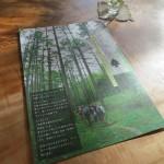 深緑の松葉屋通信