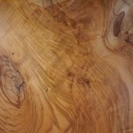広葉樹一枚板のテーブル展はじまりました!