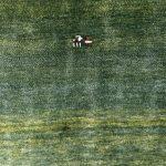 ゾランヴァリ・アートギャッベ 『大地と空、火と草色のじゅうたん展』開催中です。