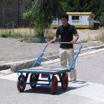 ゾランヴァリ・ギャッベを運ぶ台車がカッコいい