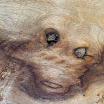 一枚板の天板 壁のシミが顔に見える?