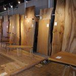 広葉樹一枚板テーブル『山桜と楠とか展』開催中です
